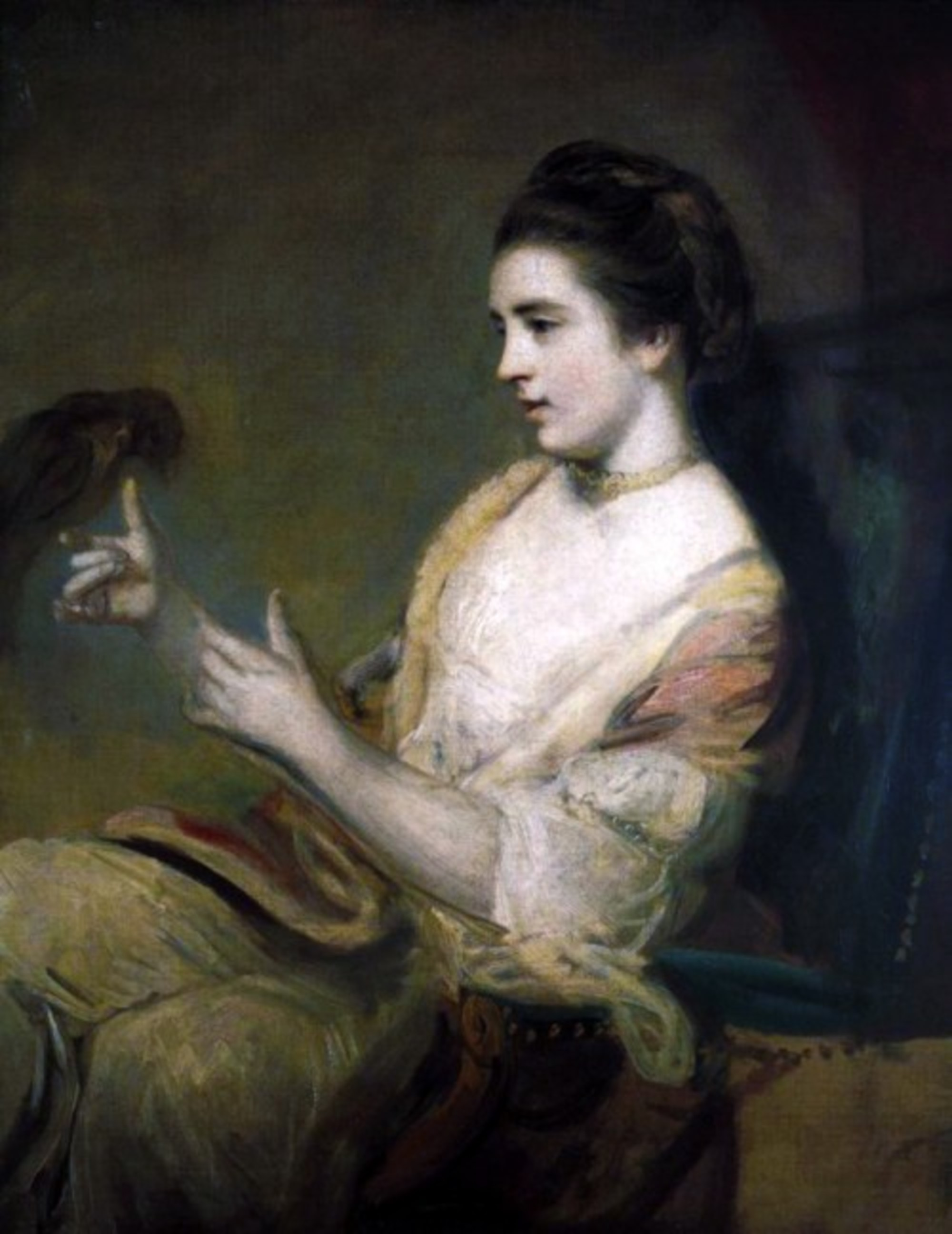 Kitty_Fisher_and_parrot_by_Joshua_Reynolds.jpg