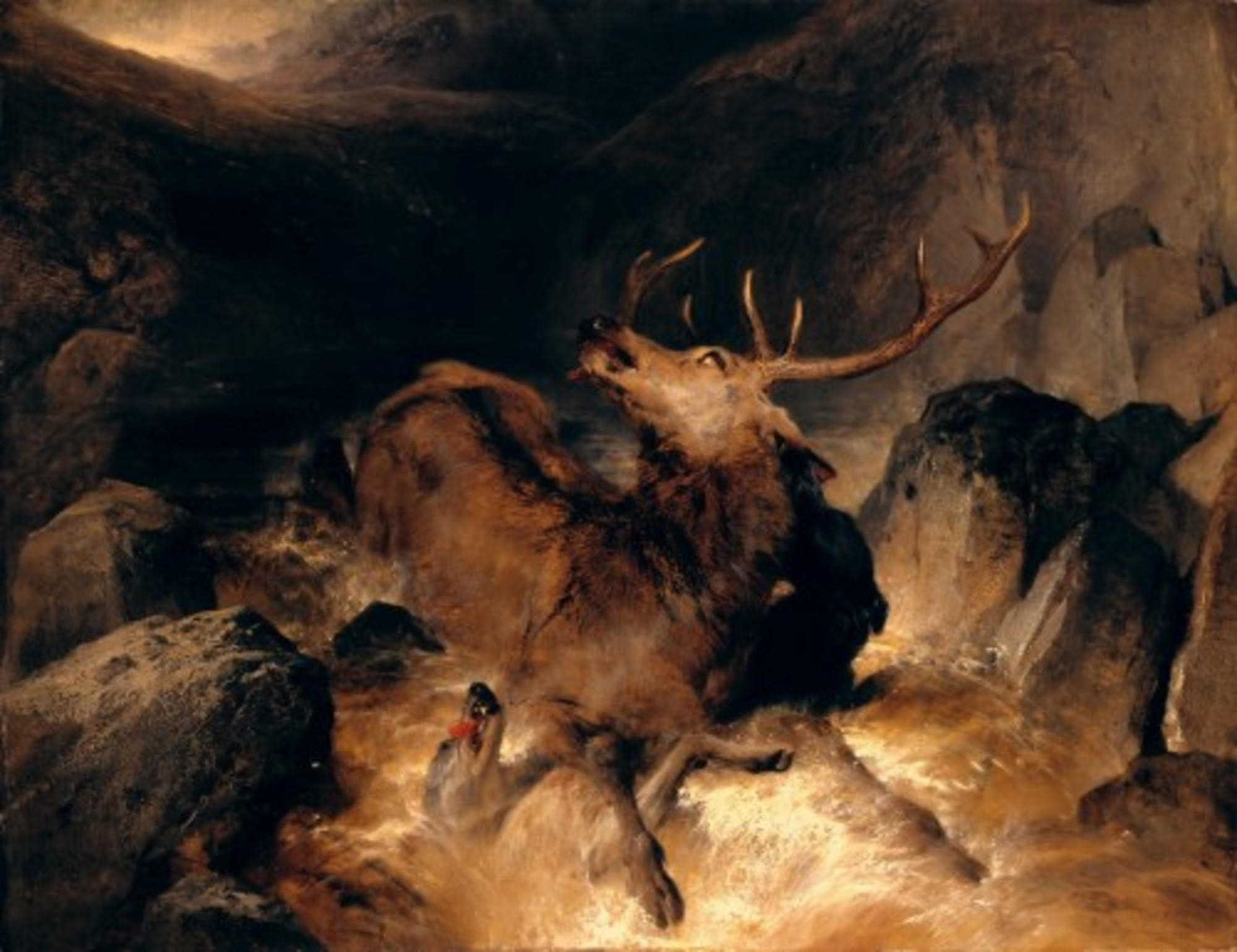 Sir-Edwin-Henry-Landseer---Deer-and-Deer-Hounds-in-a-Mountain-Torrent-Tate-Britain.jpg
