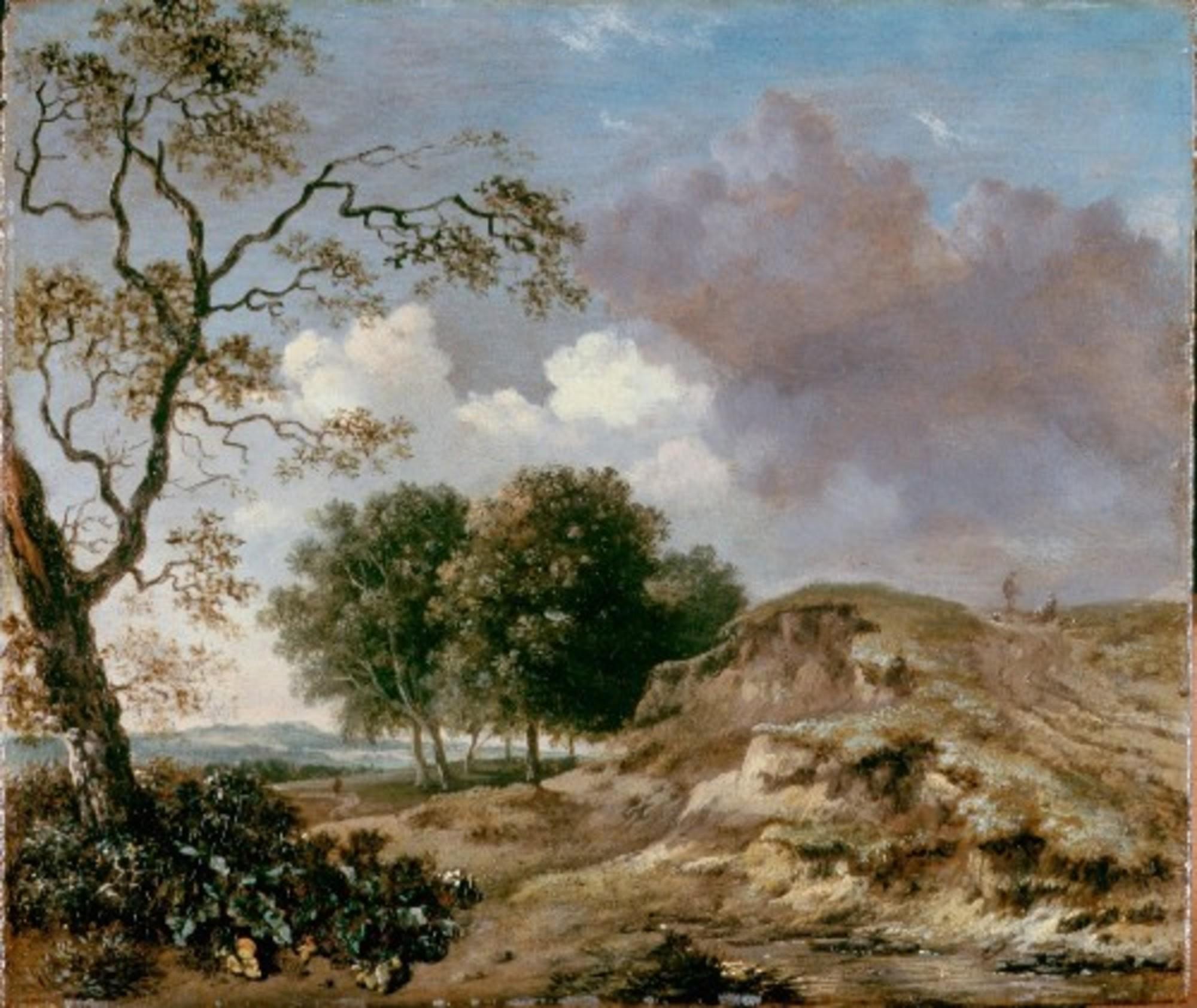 Wijnants-Jan---Landscape---Google-Art-Project.jpg