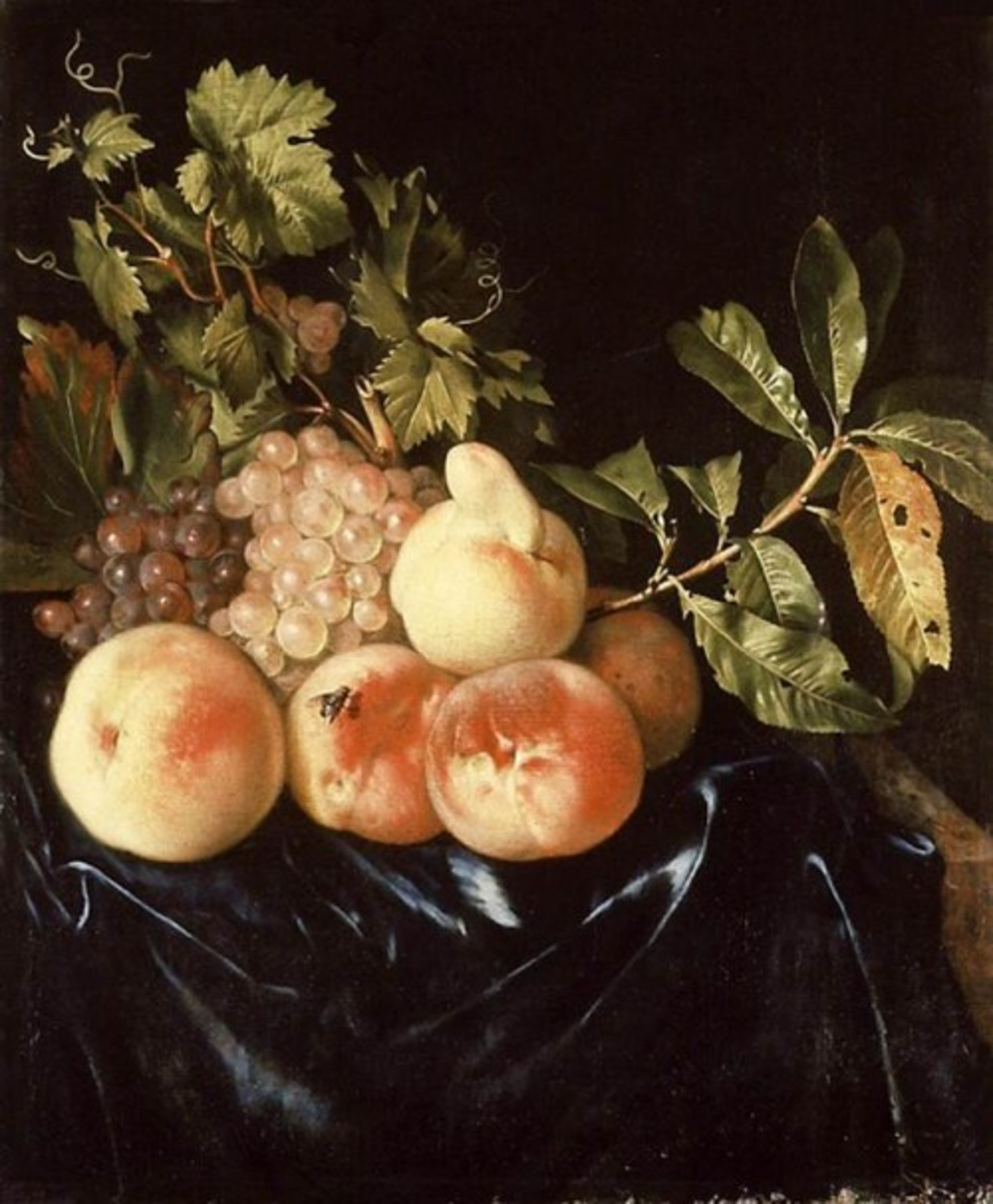 Willem-Frederik-van-Royen---Still-Life-of-Peaches-and-Grapes---WGA20175.jpg