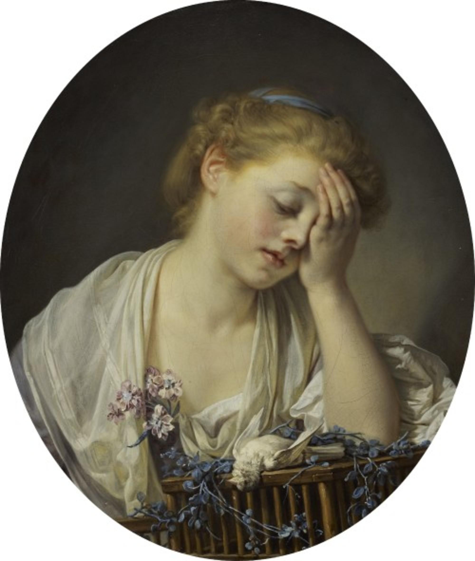 Jean-Baptiste-Greuze---A-Girl-with-a-Dead-Canary---Google-Art-Project.jpg