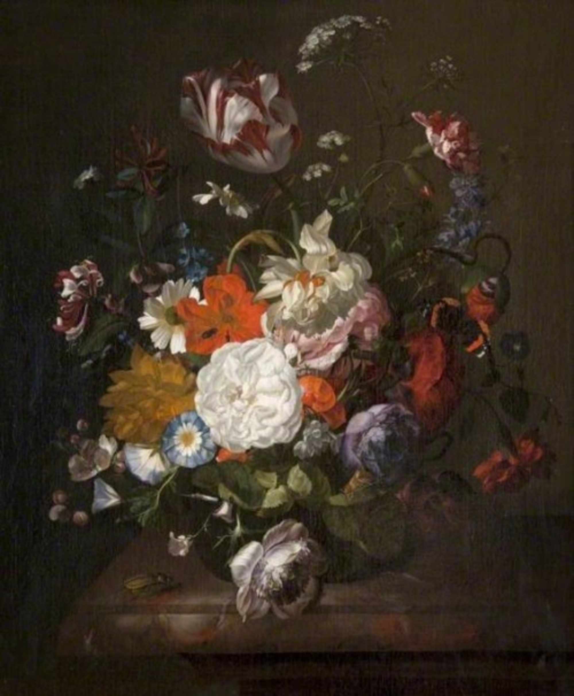 Rachel Ruysch Still Life, Flowers and Insects GL GM 104